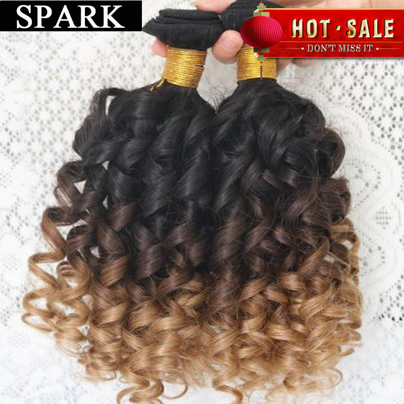 Hot Brazilian Virgin Hair Kinky Curly Virgin Hair 6A Jerry Curly Hair Extension Human Wigs1pc/Lot or mixed length 2Bundles Spark