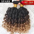 Hot Brazilian Virgin Hair Kinky Curly Virgin Hair 6A Jerry Curly Hair Extension Human Wigs1pc/Lot or mixed length 2 Bundles Rosa