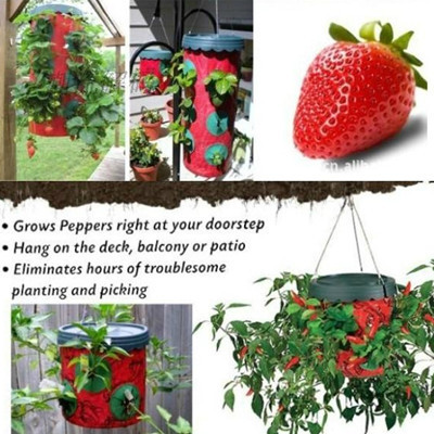 Planting Device Topsy Turvy Tomato Planter Strawberry Planting Bag