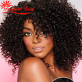 afro kinky human hair wig natural afro kinky curly human hair wigs full lace wig brazilian hair Swiss lace 150% density