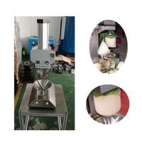 전기 신선한 코코넛 필링 트리밍 기계 젊은 코코넛 녹색 피부 제거 기계