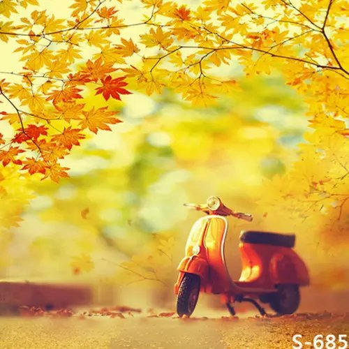 Autumn Motorcycle Model Photography Background Children ...