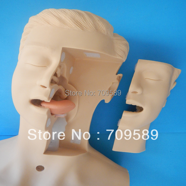 где купить HOT SALE advanced Suction training simulator дешево