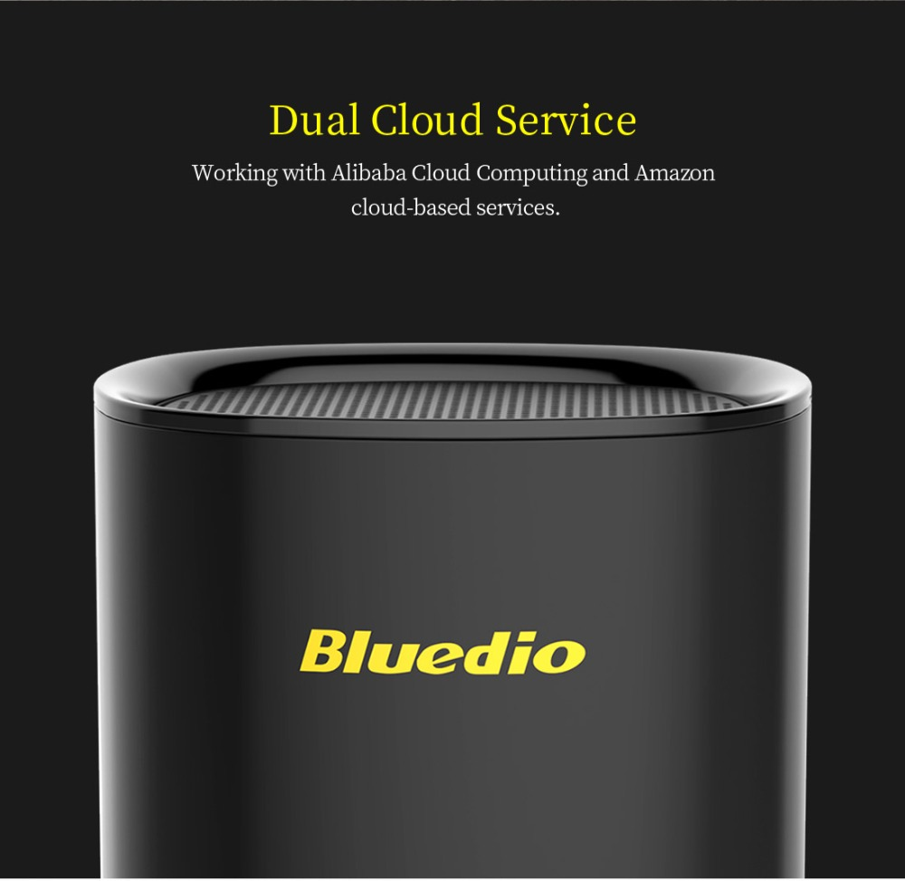 Bluedio TS5 Mini Portable Wireless Bluetooth Speaker With Microphone And Voice Control 3