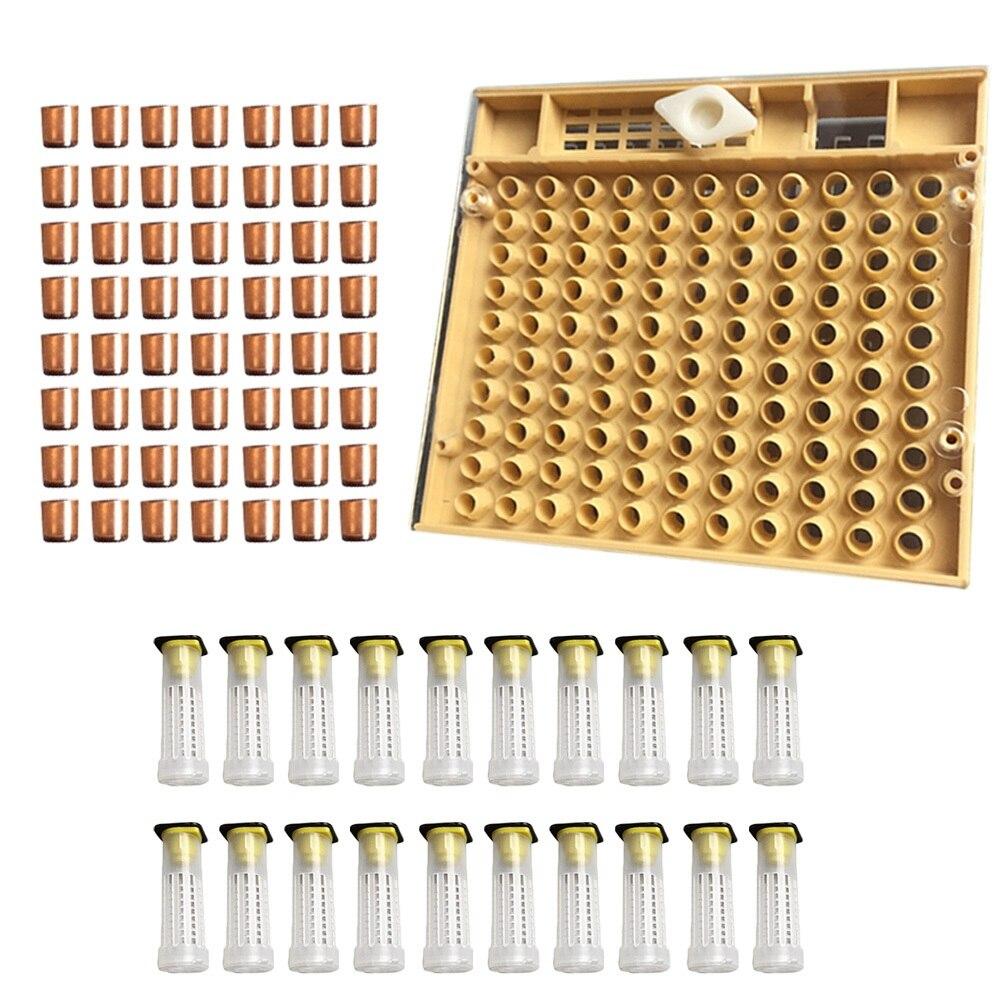 Bienenzucht Werkzeuge Ausrüstung Set Königin Aufzucht System Kultivierung Box 110 stücke Kunststoff Bee Zelle Cups Cupkit Königin Käfig