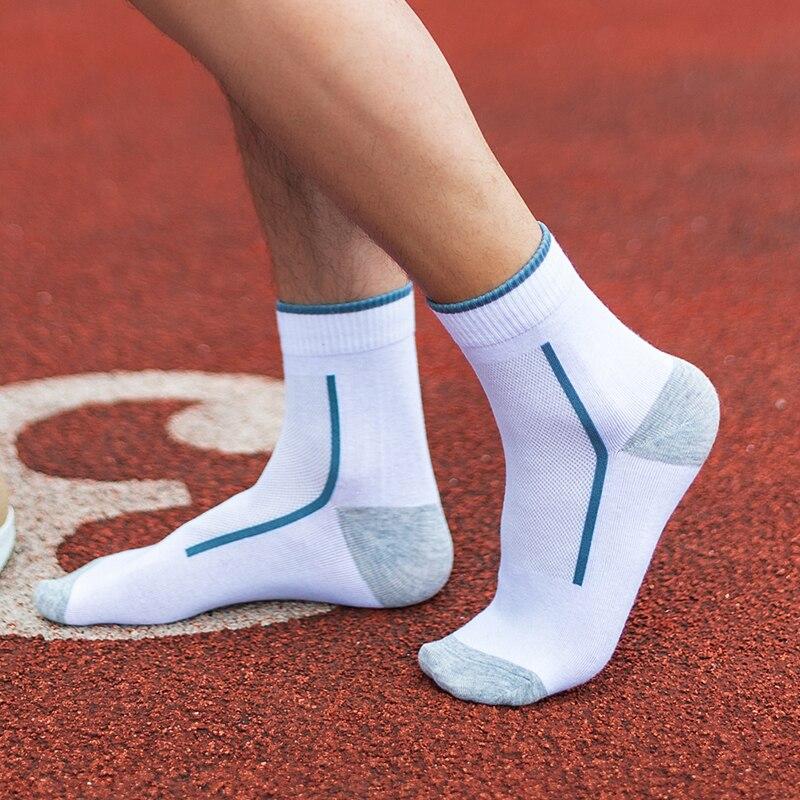 Calcetines de los hombres A266 casa usar calcetines de algodón 4 temporadas de calidad