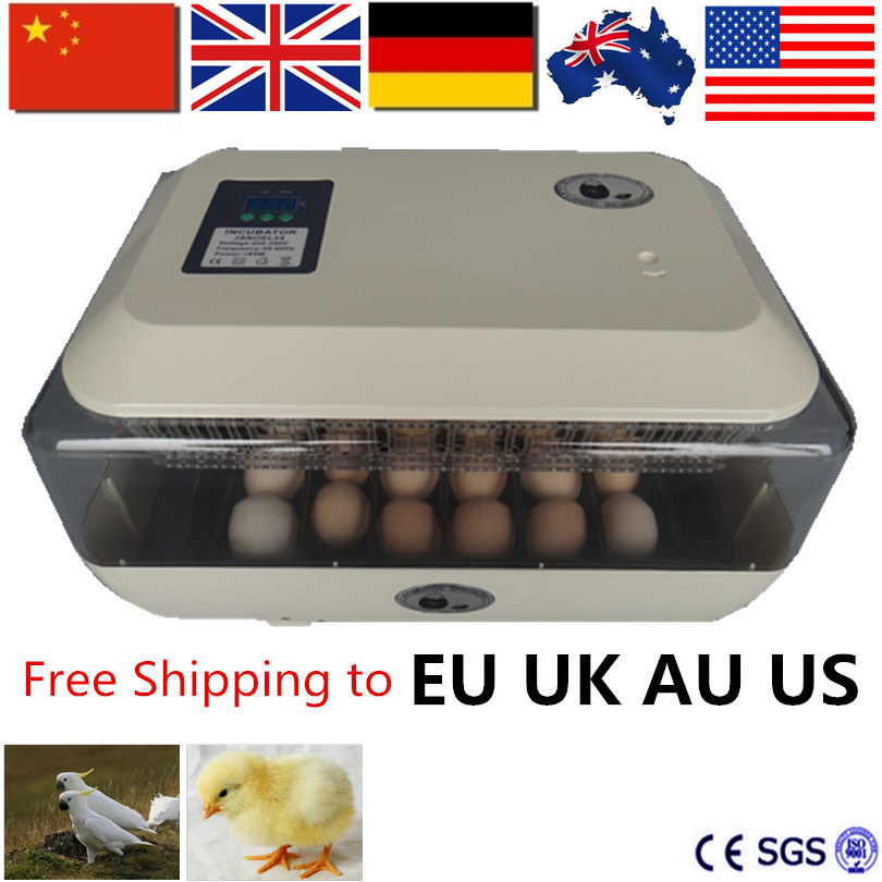 110v/220v Motors Automatic Egg Incubator Tray 24 Egg High Hatching Rate Incubator New Incubation Equipment Chicken Bird110v/220v Motors Automatic Egg Incubator Tray 24 Egg High Hatching Rate Incubator New Incubation Equipment Chicken Bird
