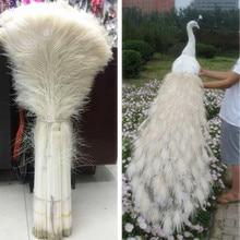 סיטונאי 100pcs יפה טבעי לבן טווס נוצת עין 70 80 Cm/28 32 אינץ דקורטיבי חגיגה בגדי אביזרי Diy