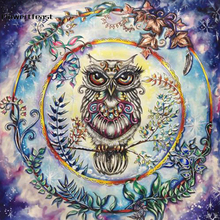 DIY Diamond Art Painting Owl Drill Square Embroidery Picture Rhinestone Mosaic Cartoon Home Decor