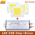 LED COB Chip Light 10W 20W 30W 50W 70W LED lamp / LED driver Transformer Voltage regula High Flux Suitable For Flood Light DIY