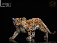 1:6 Scale JXK JxK009C The Leopard Fluoresced Eyes Animal Figure Model Toy