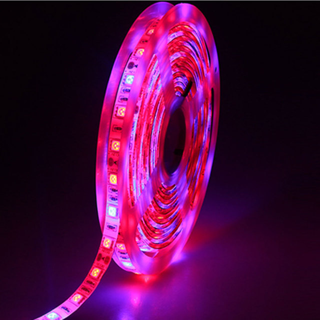 With you Leg grow light strip opinion