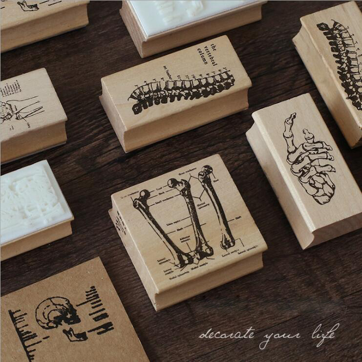 The human boby skeleton Creative Vertebra/skull/Bone structure seal stamp Wood and rubber seal Log stamp Decorative dairy bookThe human boby skeleton Creative Vertebra/skull/Bone structure seal stamp Wood and rubber seal Log stamp Decorative dairy book