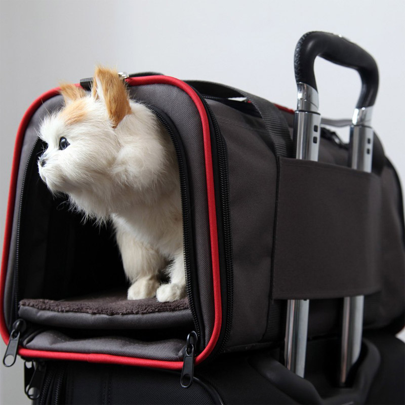 Luxurious-Expandable-Portable-Pet-Dog-Car-Travel-Bag-For-Small-Dogs-Oxford-Breathable-Cat-Carrier-Outdoor (2)