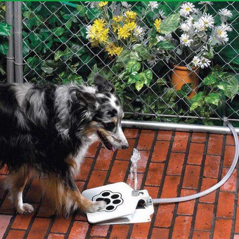 Animale domestico Del Gatto del Cane Zampa di Acqua Potabile Bottiglia di Foundtain Ciotola Dell'acqua di Alimentazione di Acqua di Alimentazione di Addestramento Del Cane Per I Cani di Trasporto di Acqua Potabile alimentatore - 1