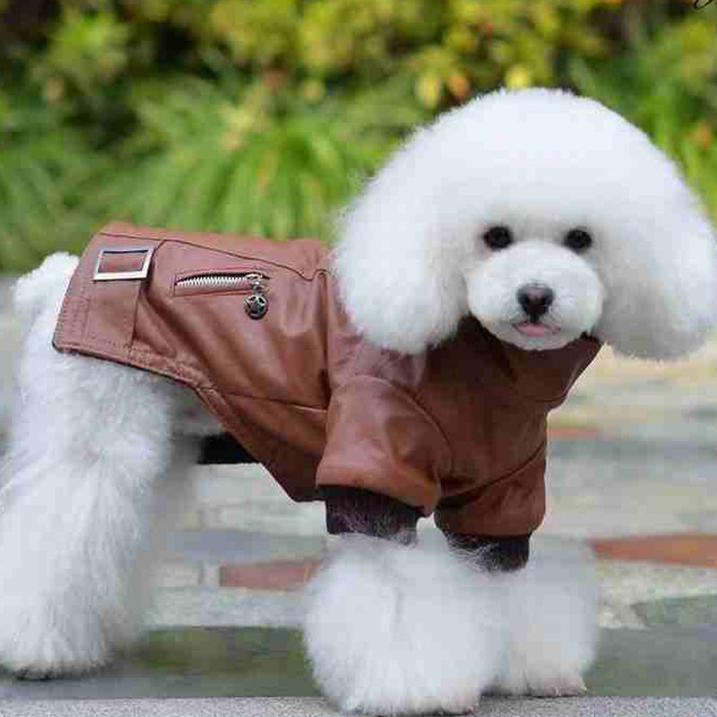 Aliexpress.com : Buy Free Shipping Big And Small Dog ...