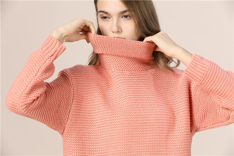 Casual Loose Autumn Winter Turtleneck Sweater Women Oversize Solid Knitted Sweaters Warm Long Sleeve Pullover Sweater Black Pink 15