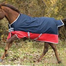 Сезон весна-осень; водонепроницаемый коврик в виде лошади; ветронепроницаемый плащ для лошадей