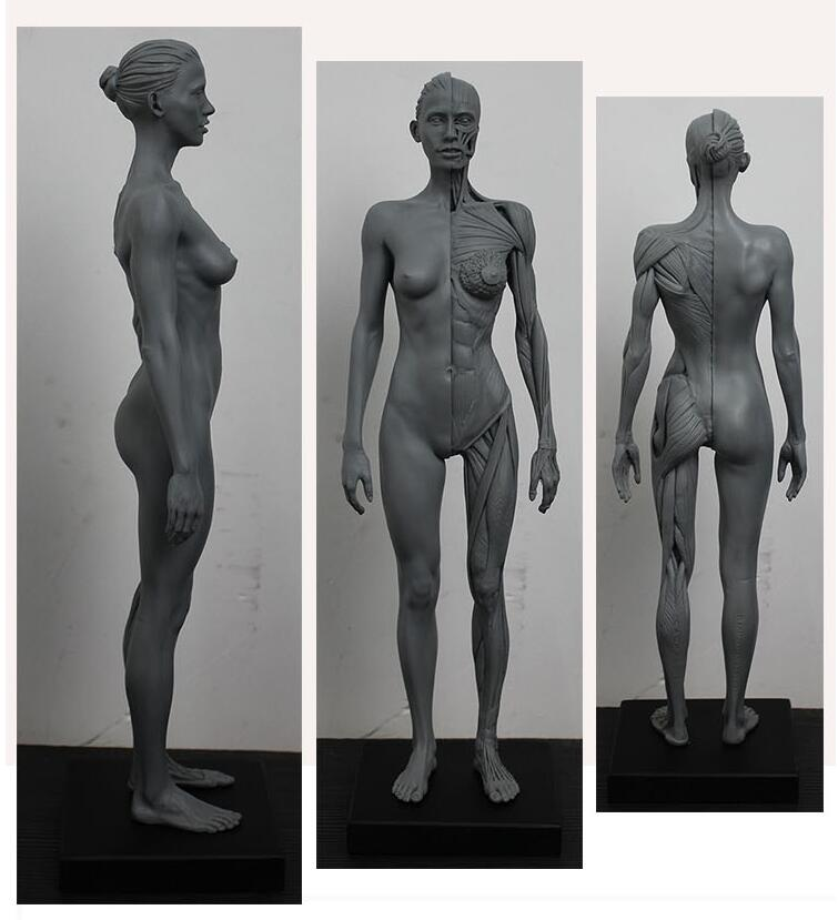 Know Your Images: Sculptures inspired by medical imaging