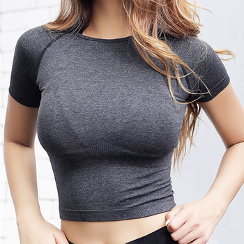 Nepoagym Quick Dry Women Cropped Seamless Short Sleeve Top  Womens Workout Tops  Sports Wear for Women Gym  Women Sexy Shirt Top