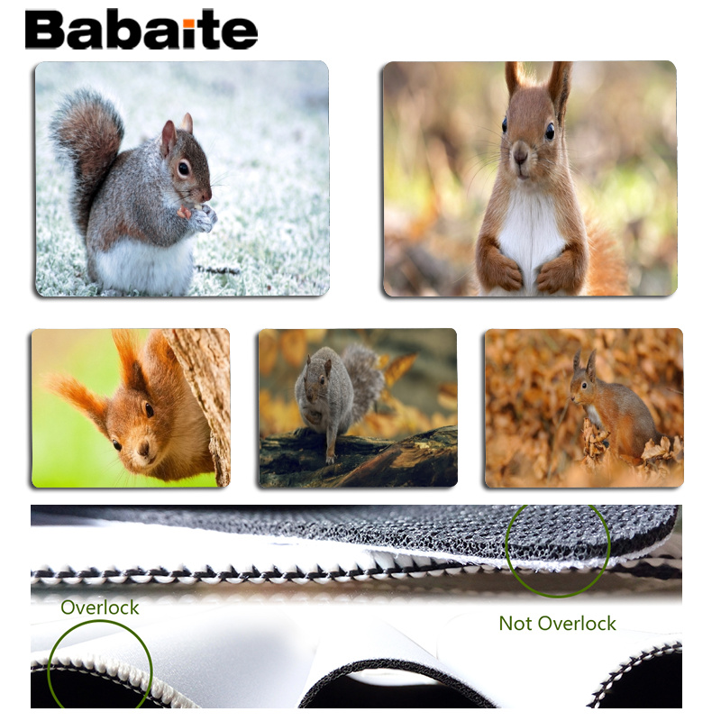 Babaite New Designs Squirrel Customized MousePads Computer Laptop Anime Mouse Mat Size for 180x220x2mm and 250x290x2mm Mousepad