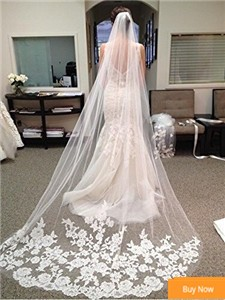 -Hot-Sale-Wedding-Veil-Cathedral-3-Meter-Velos-De-Novia-Wedding-Veil-Birdcage-Appliques-Veil