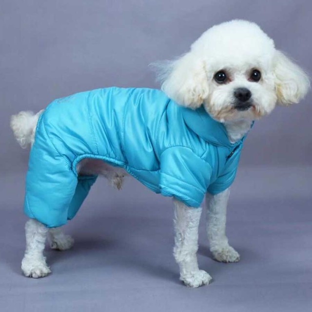 Waterproof and durable, the Concise Winter Dog Jumpsuit