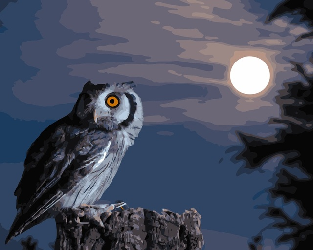 MaHuaf I781 DIY Oil Painting By Numbers Animals Night Owl