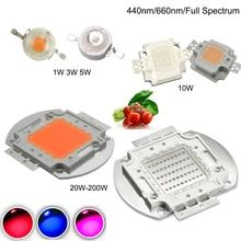 Высокая мощность Королевский синий светодиодный чип для выращивания 440нм 450нм 660нм полный спектр 1 Вт 3 Вт 5 Вт 10 Вт 20 Вт 30 Вт 50 Вт 100 Вт COB светодиодный светильник для DIY растений
