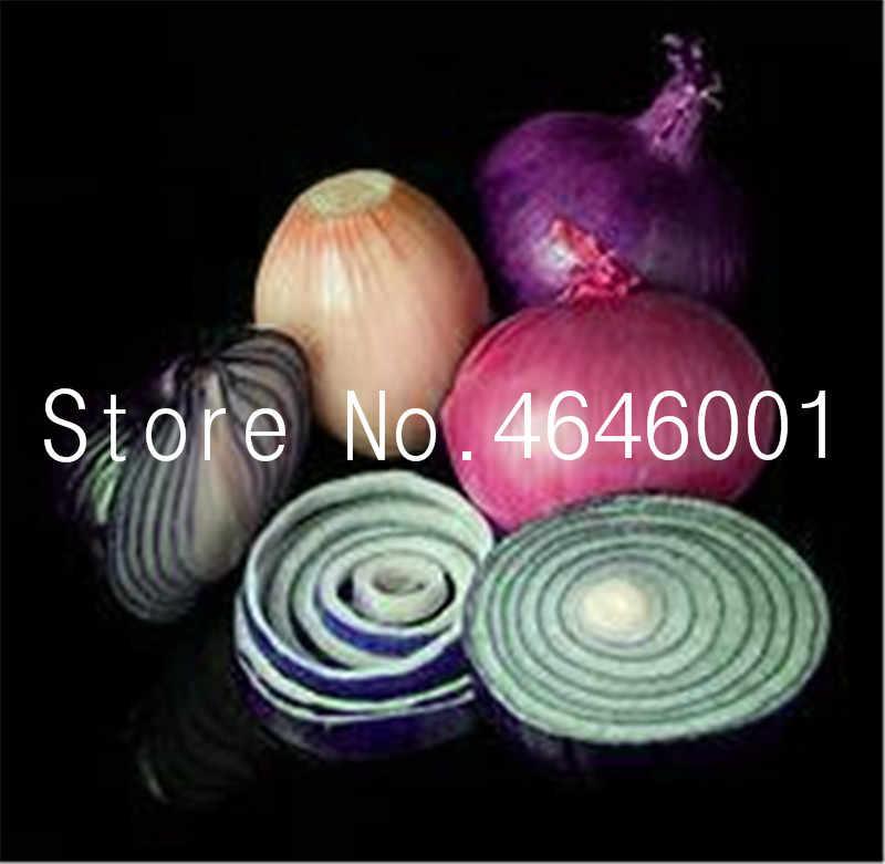 200 قطعة/الحقيبة البصل الملونة المزروع ، بونساي البصل العملاق ، الخضروات العضوية الصالحة للأكل الخضروات بونساي النباتات النادرة لحديقة المنزل