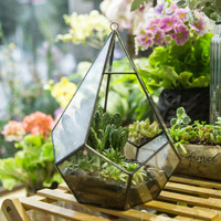 22cm Diamond Shape Geometric Glass Hanging Terrarium Air Plant Succulent Planter DIY Wedding Decoration Flowerpot Box