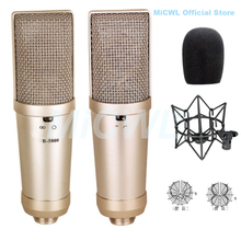 TLM-103 Phantom Power Large Diaphragm Cardioid Condenser Microphone for Stage vocal concert Sing Record MiCWL