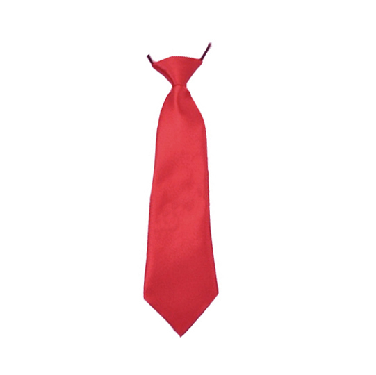 Childrens Boys Adjustable Neck Tie Satin  elastic Necktie High Quality Solid tie Clothing Accessories HD0001a