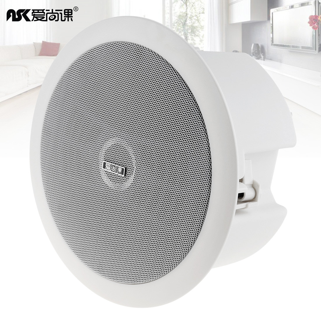 6 Inch 10W Round High Sensitivity Coaxial Radio Ceiling Speaker Public Broadcast Background Music Player Loudspeakers for Home