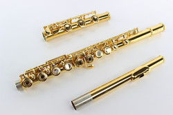 High Quality 17 Hole Open C Tune E Key MARGEWATE Flute Professional Musical Instruments Cupronickel Gold Plated Flute With Case