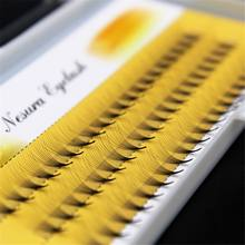 2019 New Arrival Women Soft 0.07 C 10D Wave Individual Eyelashes Silk False Eye Lashes Extension Mink Black Tools(China)