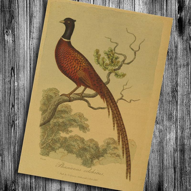 Vintage Pheasant And Flower Wallpaper | Gardening: Flower