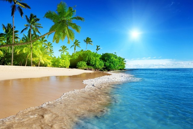 image-plage-soleil