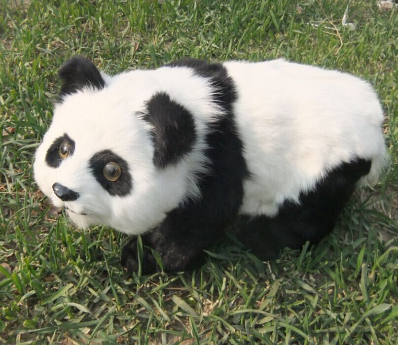 cute simulation walking panda toy lifelike white&black panda doll gift about 48x22cm simulation white phoenix toy lifelike beautiful long tail bird gift about 50cm
