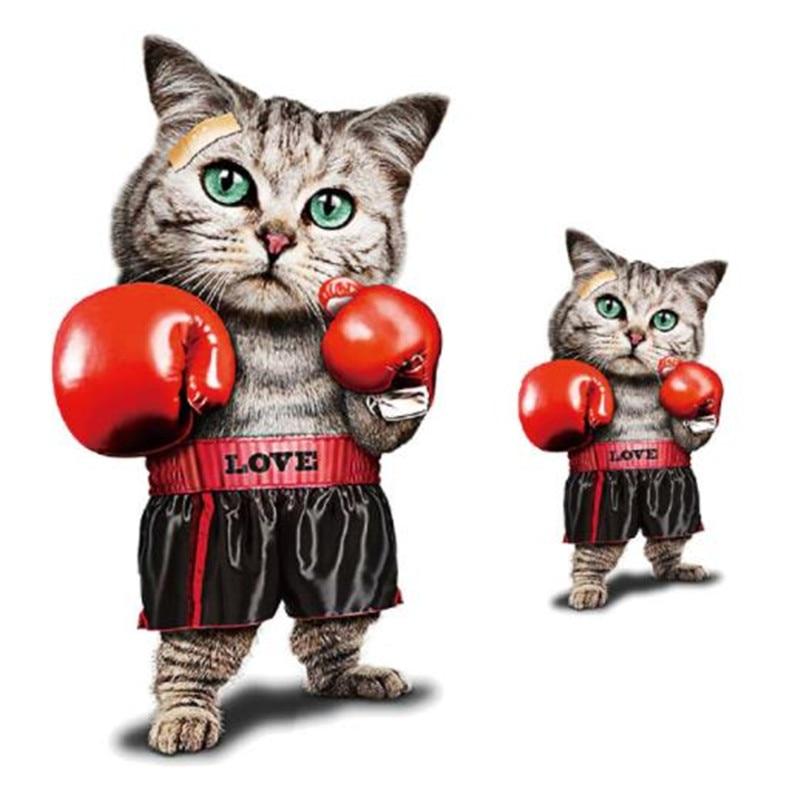 Картинка котенок боксер