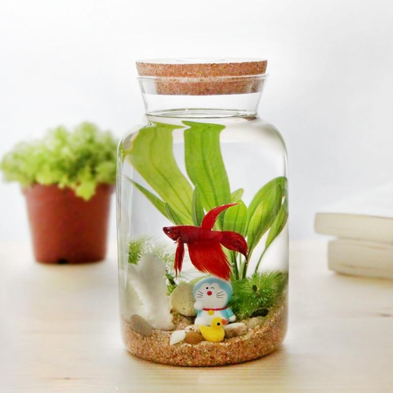 Plus light green with creative eco bottle desktop aquarium for Fish in a jar