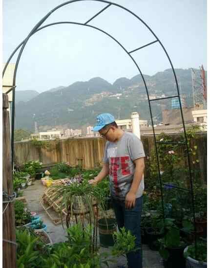 Detail Feedback Questions about Iron Pergola Garden Flower