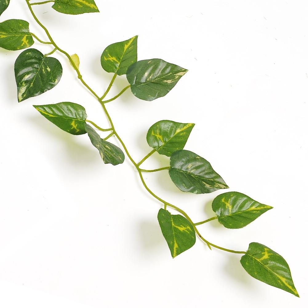 Evergreen flowering vines reviews online shopping for Decoration leaves