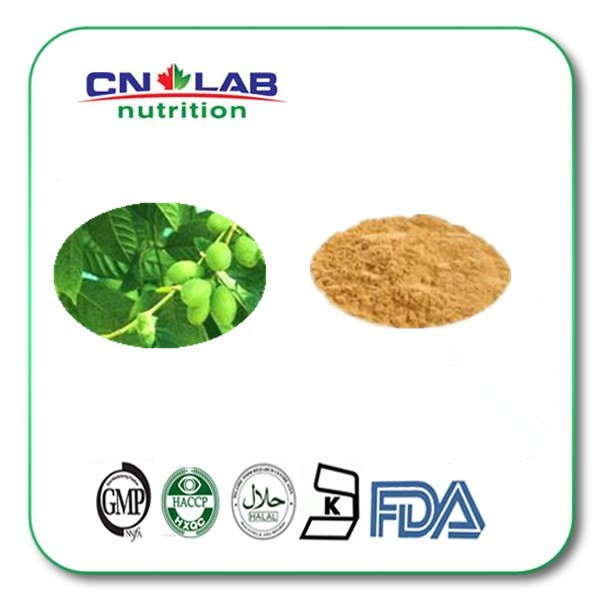 200g Anti-oxidant olive leaf extract powder,factory supply oleuropine,natural herbs olive leaf extract oleuropein стоимость