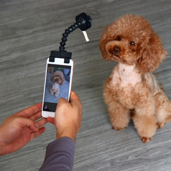 Pet Selfie Stick for Interaction