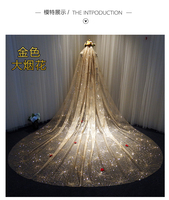 Sparkly Sequins Wedding Veils Gold Bling Bling Bridal Veils Glued Sequins 3 Meters Long Wedding Accessories