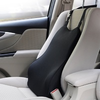 2017 New Premium Design Therapeutic Car Seat Cushion Back Lumbar Waist Support High Quality Breathable Healthcare