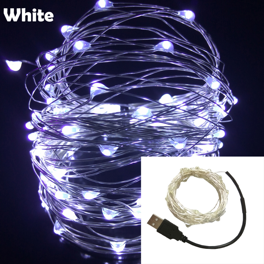 10M 33FT 100 led USB Outdoor Led Copper Wire String Lights Christmas Festival Wedding Party Garland Decoration Fairy Lights 1