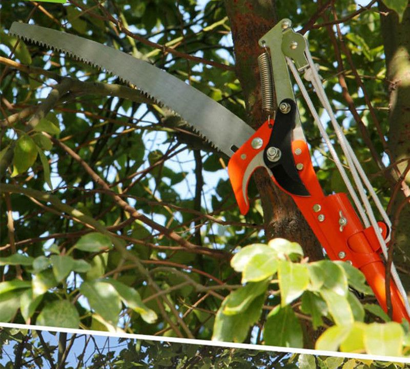 3 Meter Tools Pruning Shears High branch saws twist tree scissors 48v rechargeable saws dust free saw angle grinder multifunctional electric pruning shearing strip fruit tree scissors pruning