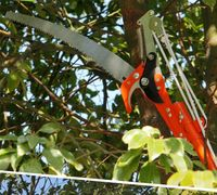 3 Meter Tools Pruning Shears High branch saws twist tree scissors
